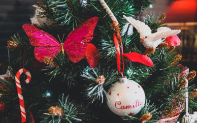 Un très joyeux Noël à tous !